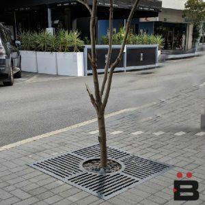 Tree Grates & Planters